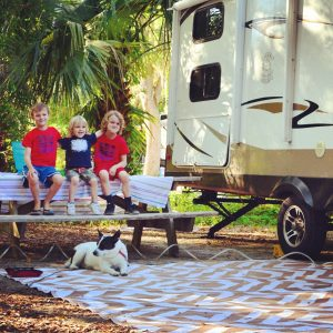 RVing with dogs