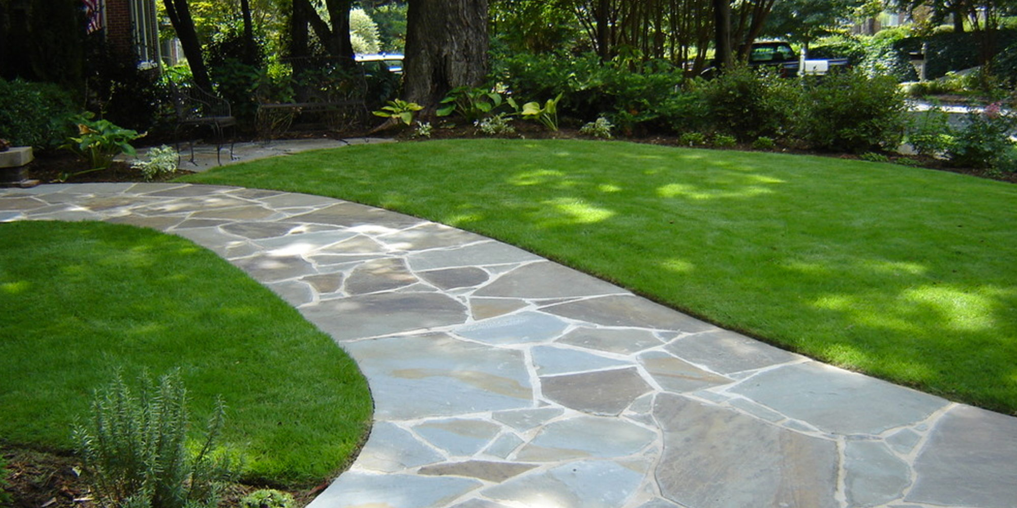 5 Best Grasses For Your Lawn Life Lanes