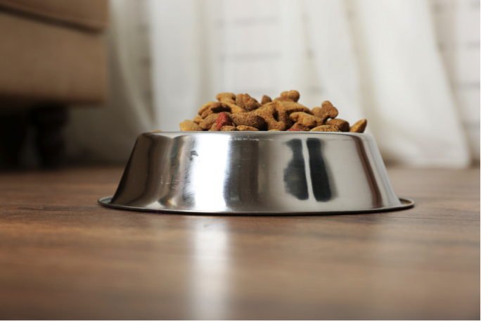 metal dog bowl filled with food