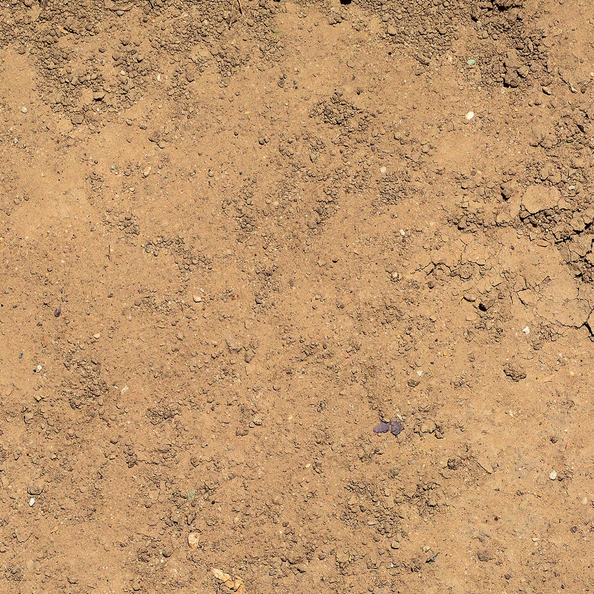 close up of dirt