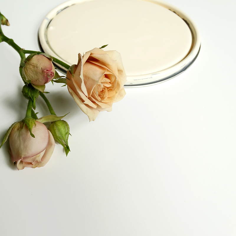 paint can lid with pale pink roses