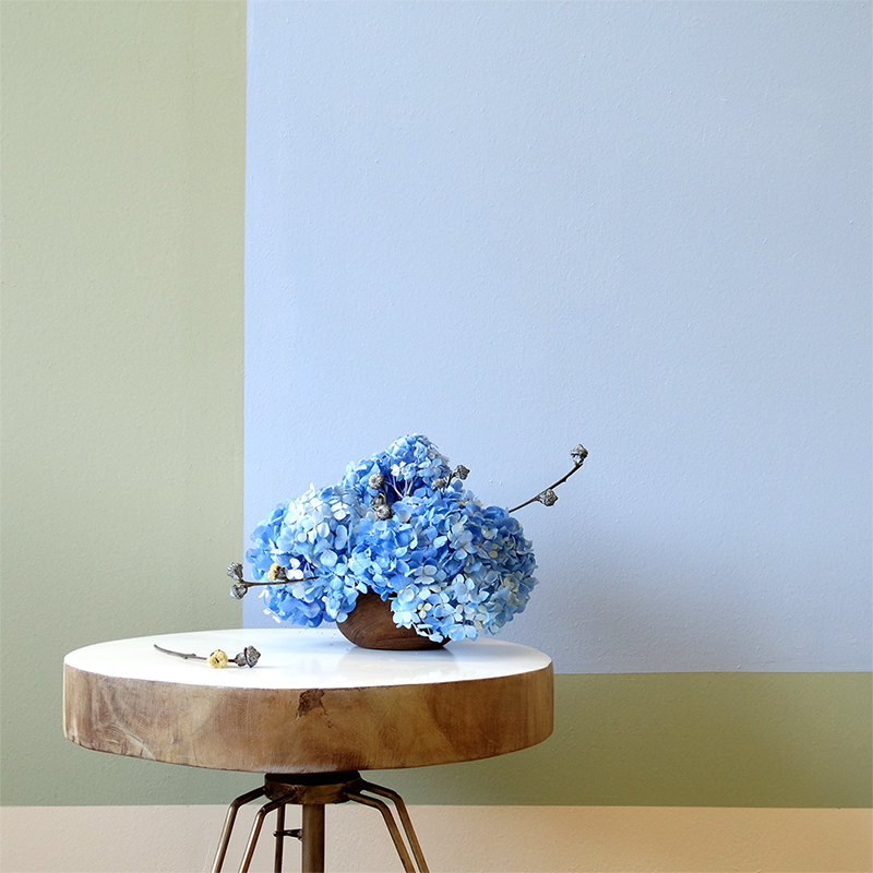 blue hydrangeas on table