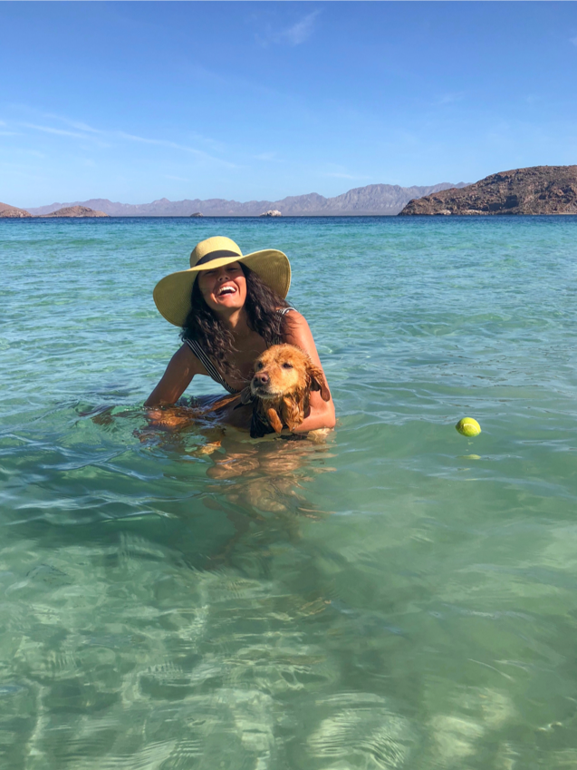 swimming with a dog