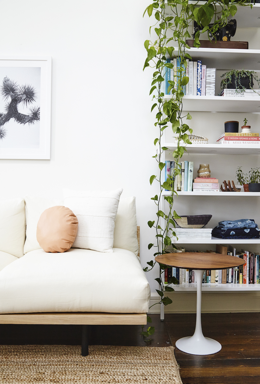 Shelves in a small apartment