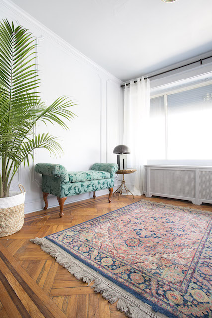 sunroom with green couch and plant